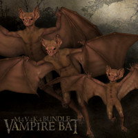 Chiroptera Vampire Bat Bundle
